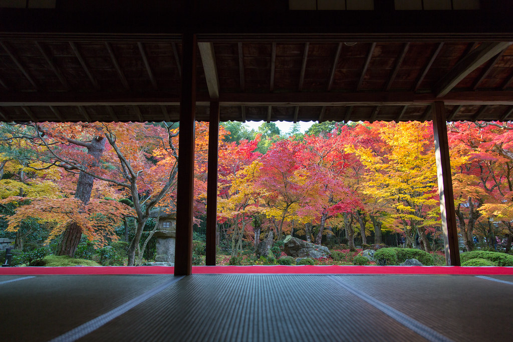 """Enkoji"" Wonderful Temple at Kyoto in JAPAN, Autumn is best season."