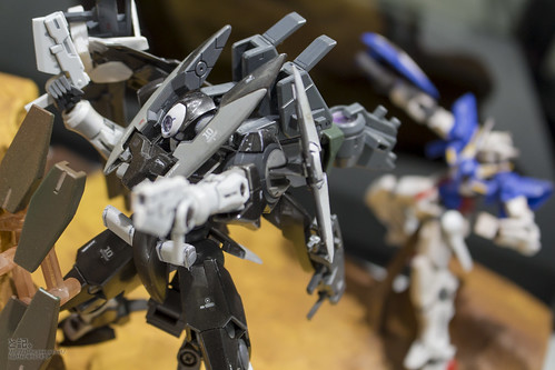GBWC2014_World_representative_exhibitions-250