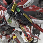 GBWC2014_World_representative_exhibitions-208
