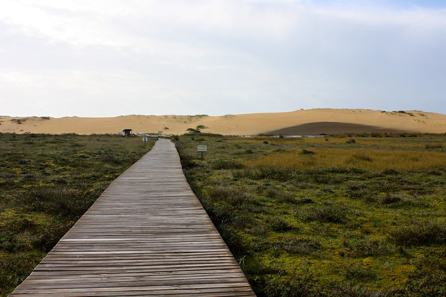 Corrubedo dunes, Ribeira, Spain