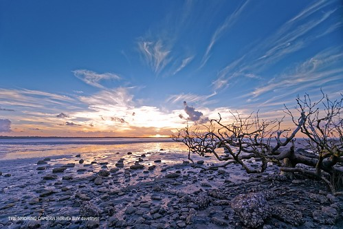 world travel sunset seascape art beach canon magazine lens golden coast seaside flickr dragon image magic award tourist hour lowtide wilderness fraser mangroves 6d 1635mm flickrsbest davefryer