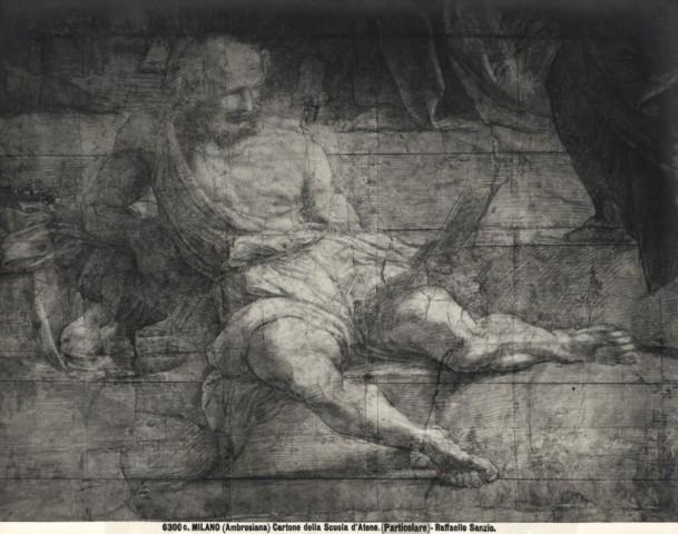 cartone-raffaello Diogenes