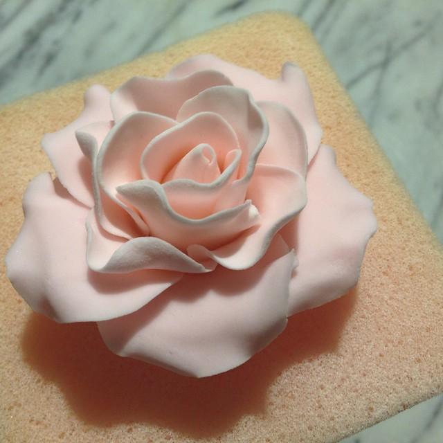 pretty gum paste roses