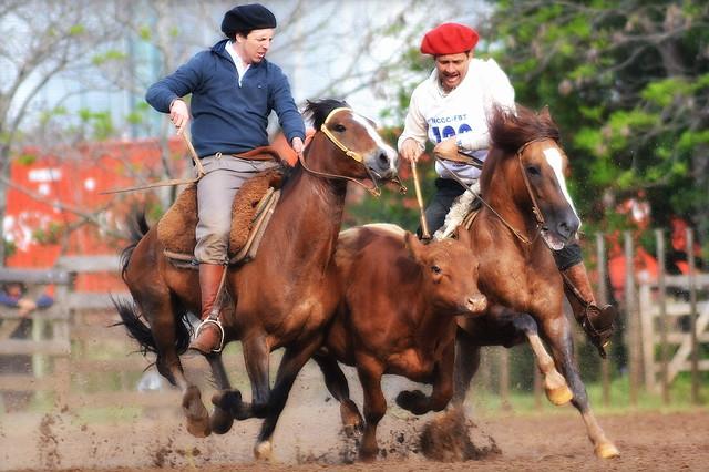Cavalos e trens