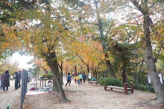 hattoriryokuchi20143