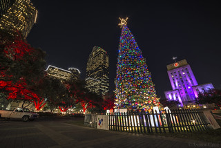 Downtown Houston Christmas Tree