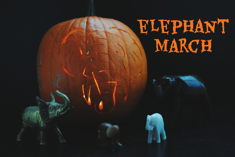 Elephant March Pumpkin Carving