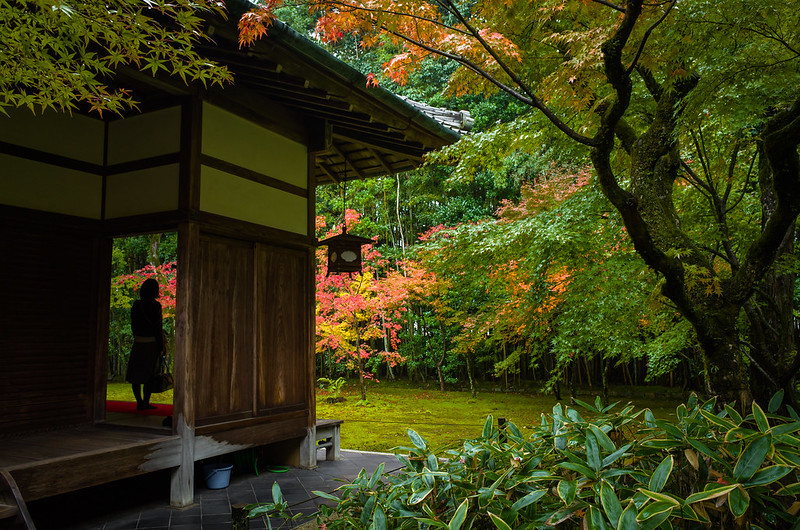 momiji '14 - autumn foliage #1 (Koto-in temple, Kyoto)