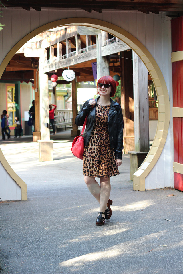 Leather Jacket, Leopard Print Dress, Wayfarer Sunglasses, and Fisherman Sandal Heels