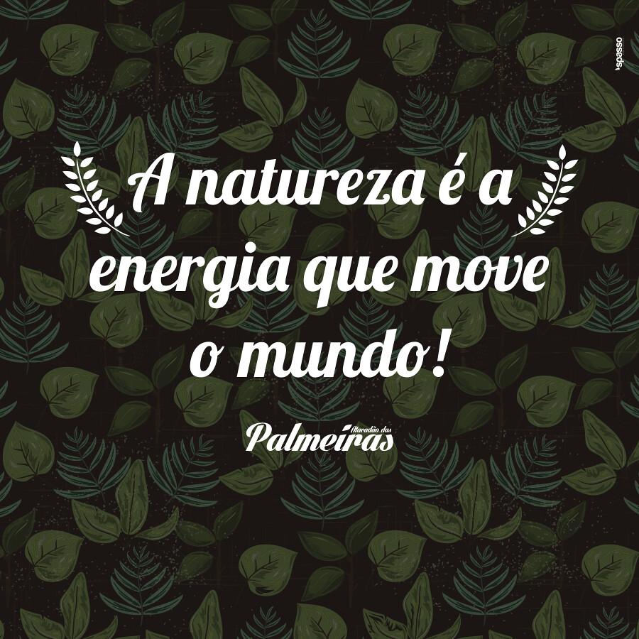 Frases Atacadão Das Palmeiras Phillipe Araujo Flickr