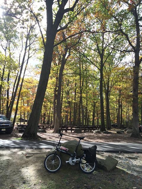 日, 2014-10-26 11:22 - Tillman Mountain State ParkのBike Friday