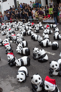 1600_Panda_Jalan_Lintang_Penang_07