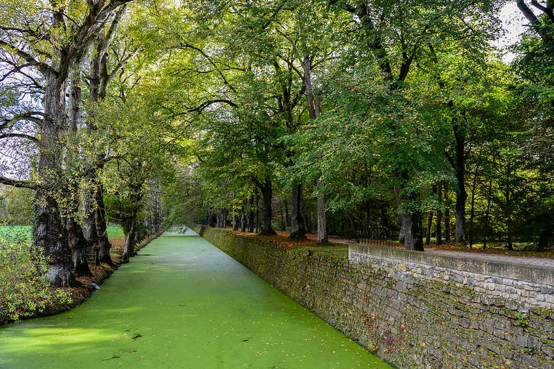 Chenonceau Moat