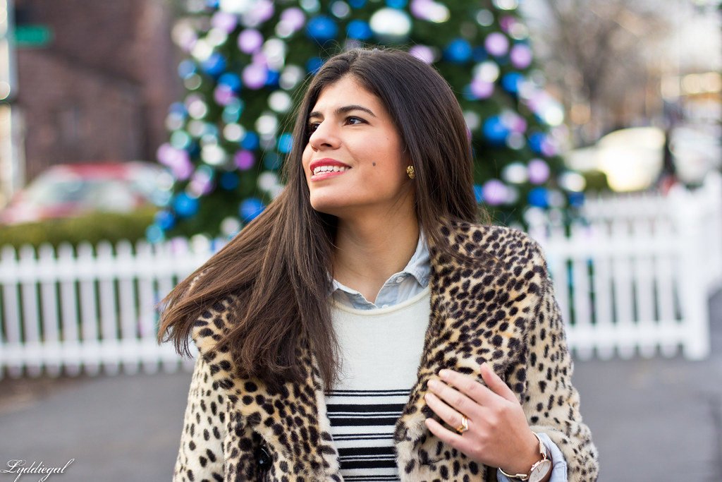 leopard coat, striped sweater, chambray-5.jpg