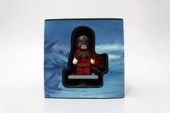 LEGO Minifigure Box Set (5004076)