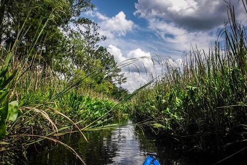 New River Paddling-51