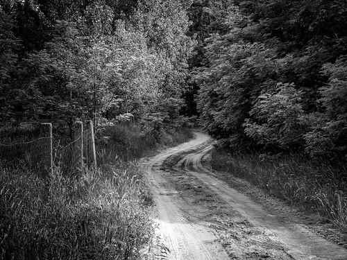 lumix countryside blackwhite hungary panasonic g7