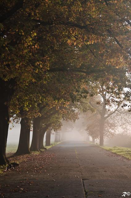 La pace dell'autunno