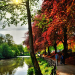 Roath Park Cardiff