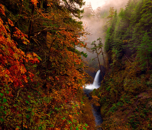 autumn mist fall nature water oregon landscape fallcolors waterfalls pacificnorthwest columbiarivergorge metlakofalls eaglecreekwilderness
