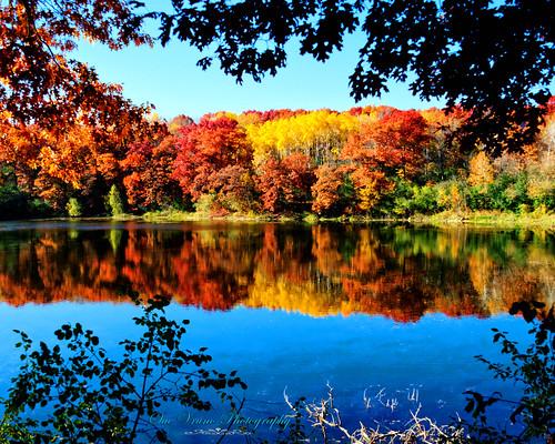fall colors minnesota fallcolors eagan