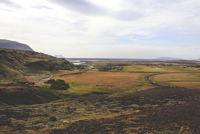 Iceland_Spiegeleule_August2014 139