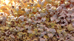 flower(0.0), petal(0.0), kettle corn(1.0), food(1.0), snack food(1.0), popcorn(1.0),