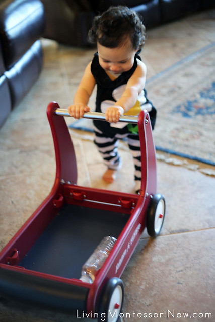Giving the Sensory Bottle a Ride in the Radio Flyer Walker Wagon (11 months)