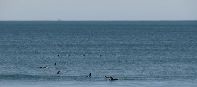 Surfer in calm water at Ocean Beach, San Francisco; November 17, 2014