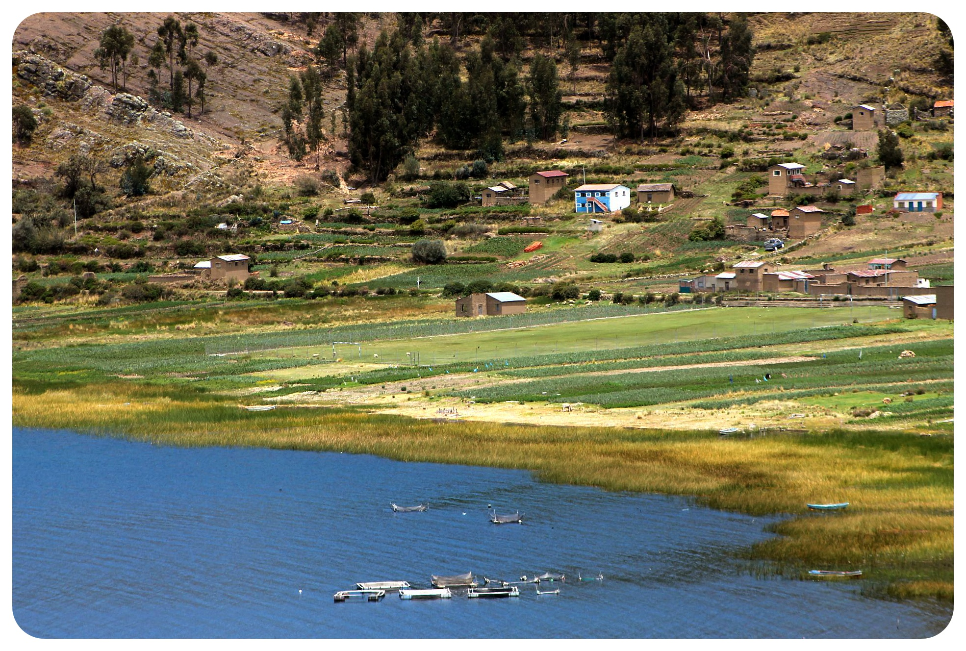 lake titicaca shore