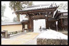 日本京都-金閣寺-雪.12
