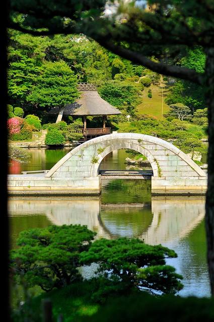 Bridge framed by trees