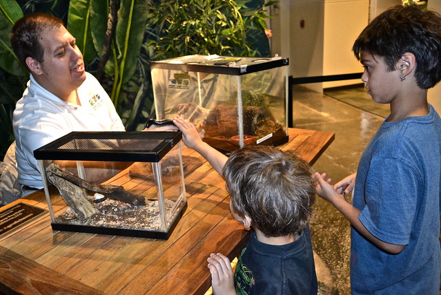 Audubon Insectarium - hands on experience