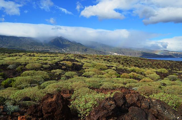 Guimar, badlands, December, Tenerife