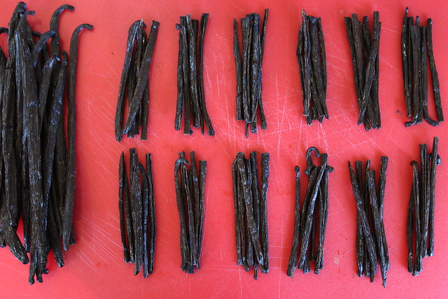 Continue until you have enough Vanilla Beans for all of your jars.