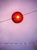 314/365: Christmas lights