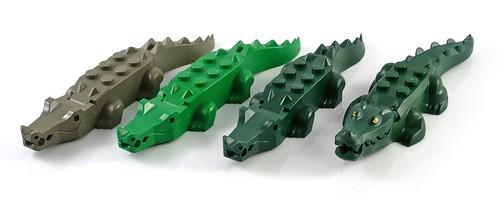 crocodile06