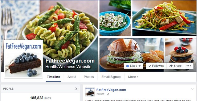 Top 50 vegan bloggers to follow in 2015 16156564492a3abee153fzg forumfinder Gallery