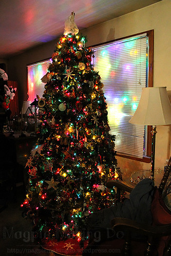 parents tree in full glory