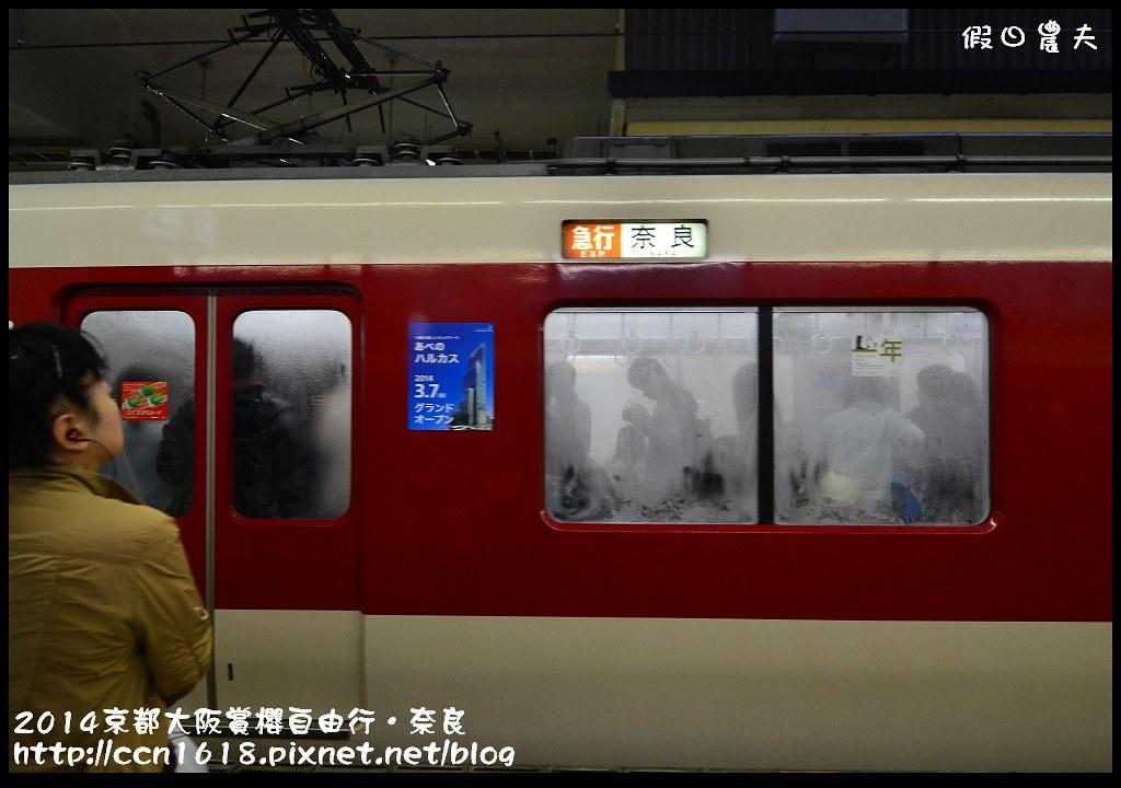 2014京都大阪賞櫻自由行.奈良DSC_0789