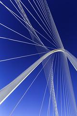 White Rays & Blue