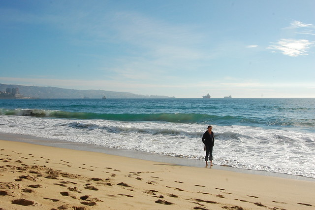 Wandering the Beach in Viña del Mar, Chile