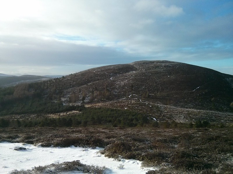 Cairn William from Pitfichie Hill