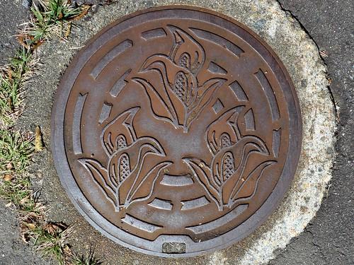 Takasu Gifu, manhole cover 3 (岐阜県高鷲村のマンホール3)