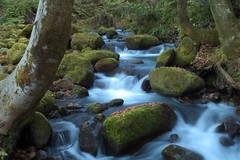 Kidanizawa mountain stream 06