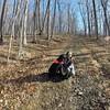 Me and B. #doggiekisses #smellybenelli #hike #hikepa #hiking
