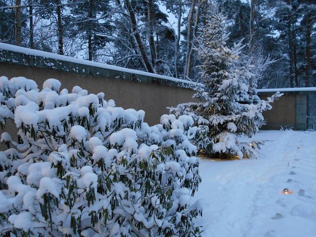 Luminen Ahveniston hautausmaa D 25.12.2014 Hämeenlinna