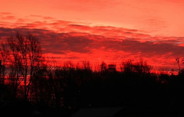 Winter Sunrise DSCN3769