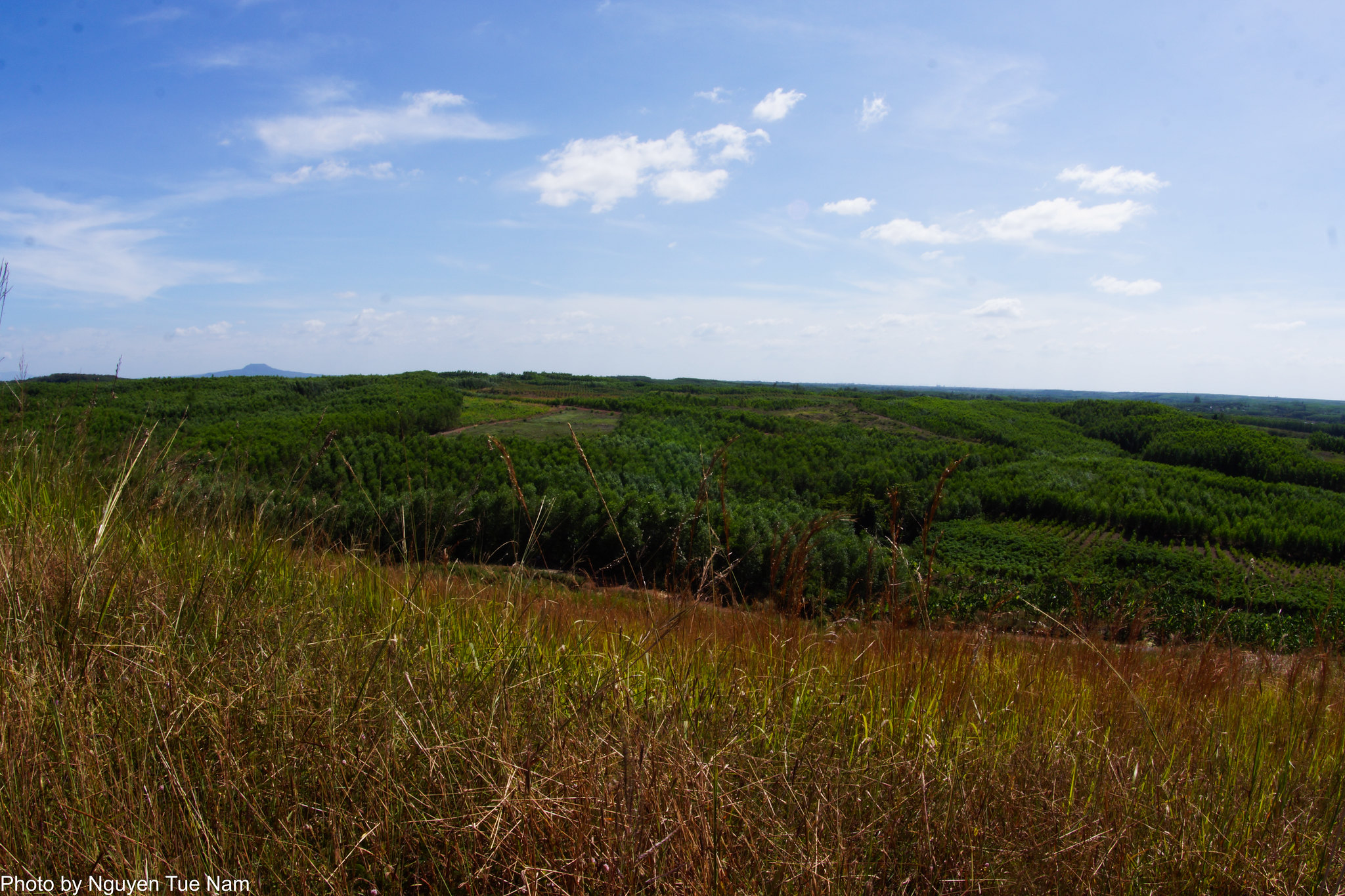 15994574296 a350c05e70 k - [ Đạp chụp ] - Cảnh đẹp lạ ở khá gần SG