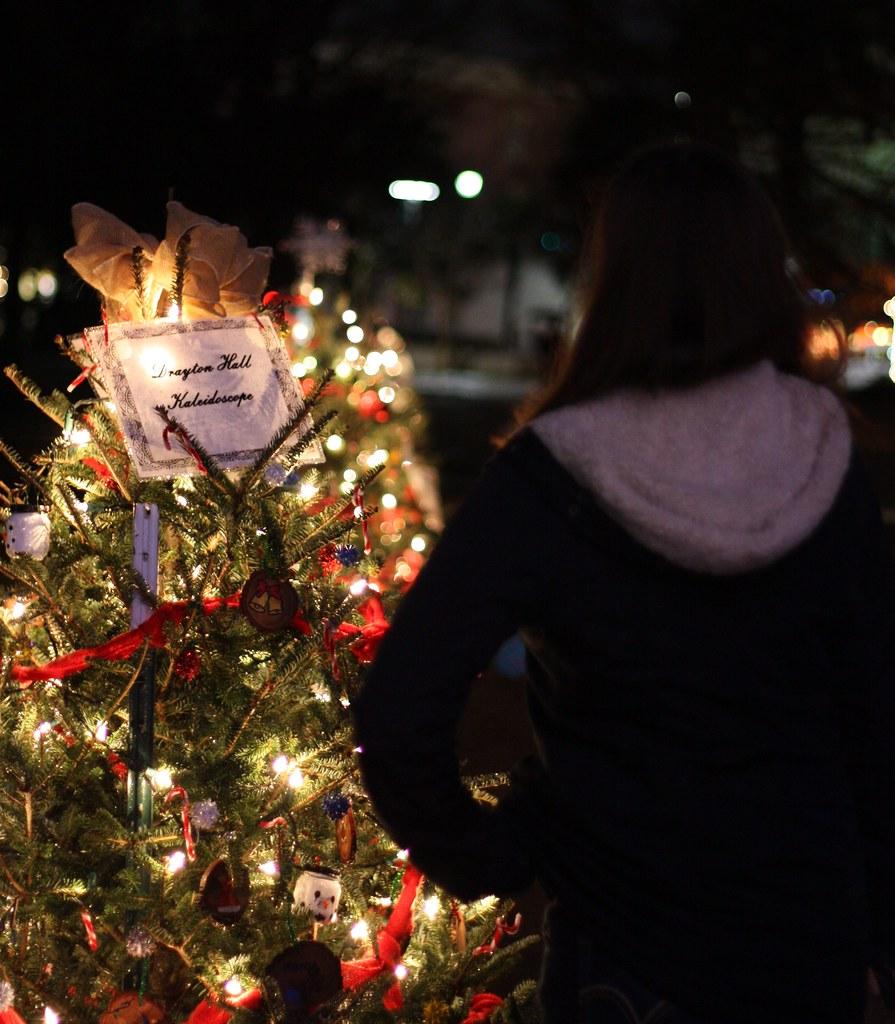 Charleston Logan at a Christmas tree